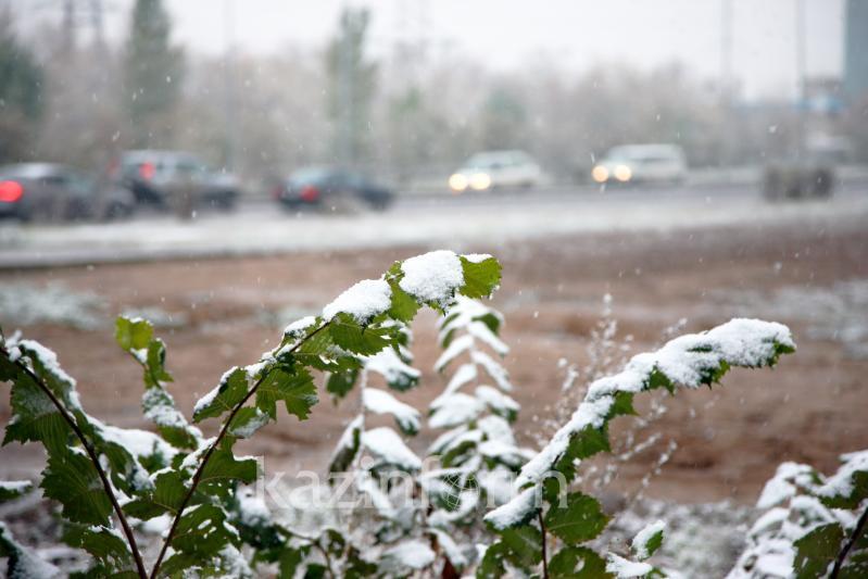 В Шымкенте выпал первый снег